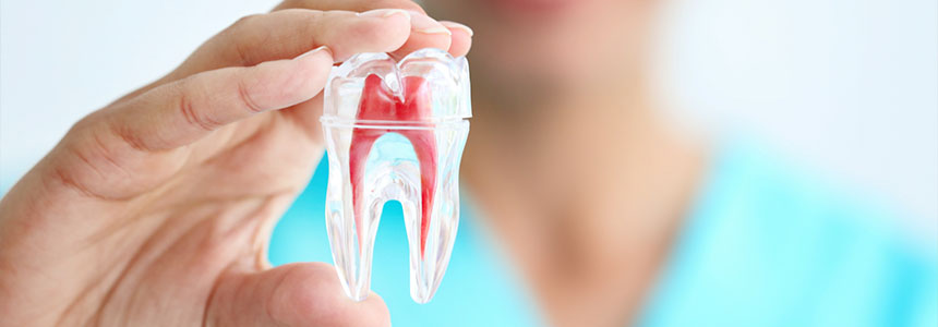 Dr Fernandes Root Canal treatment